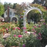 Rose Garden & Home