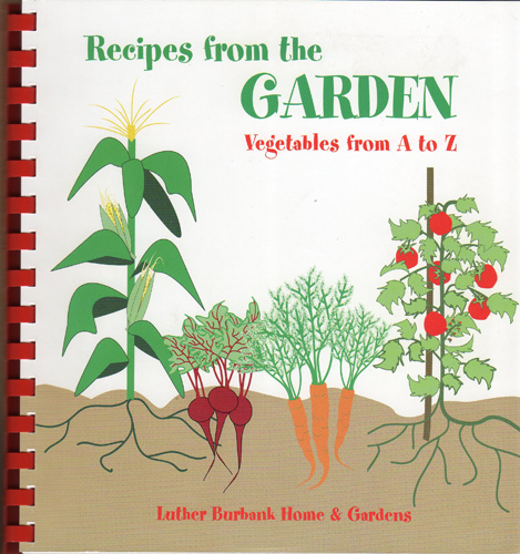 book-cookbook
