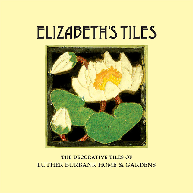 Elizabeth's Tiles Covers