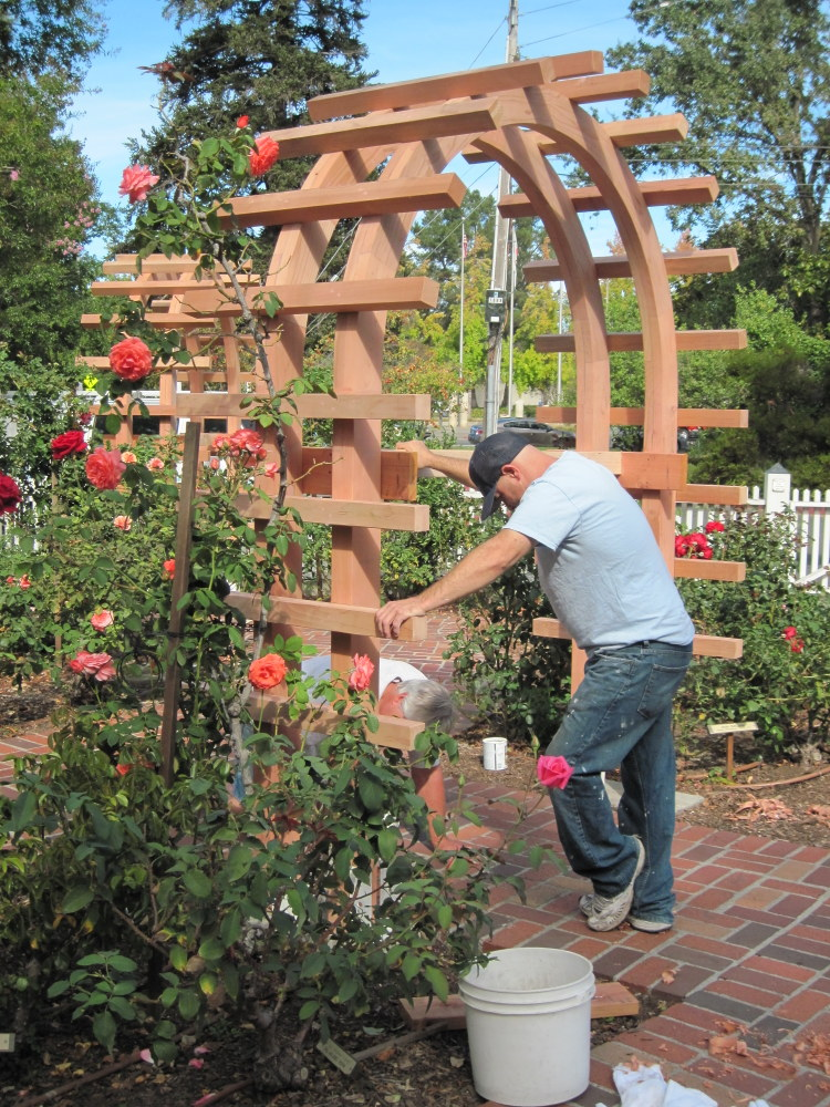 Changes on site luther burbank home gardens for Luther burbank home and gardens