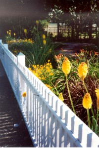 New Picket Fence along Santa Rosa Avenue