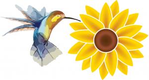 hummingbird & sunflower